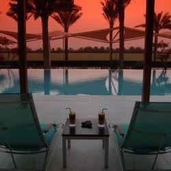 desert-palm-dubai-hotel[2]